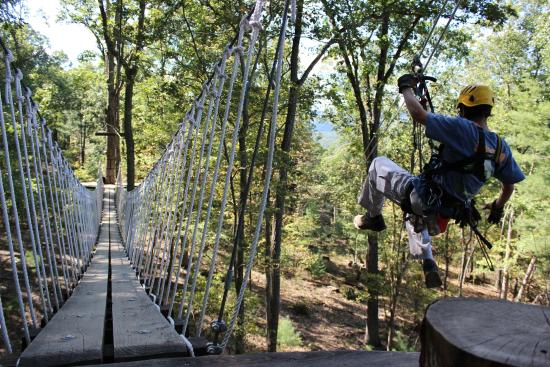 virginia-canopy-tours.jpg
